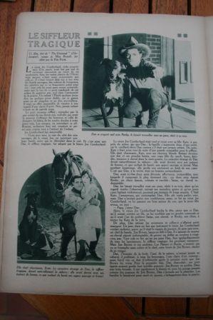The Night Horsemen