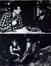 Movie Card Collection Monsieur Cinema: 49Th Parallel