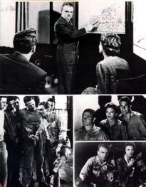 Movie Card Collection Monsieur Cinema: 13 Rue Madeleine