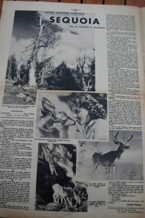 Jean Parker Sequoia