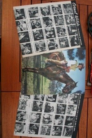 Vintage Clippings Cornel Wilde Lot Of Pics !