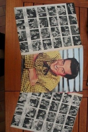 Vintage Clippings Ray Milland Lot Of Pics !