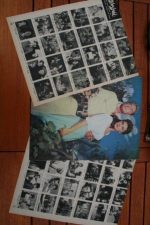Vintage Clippings Alan Ladd Lot Of Pics !