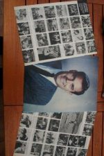 Vintage Clippings Jeffrey Hunter Lot Of Pics !