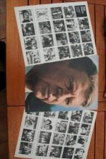 Vintage Clippings Dan Dailey Lot Of Pics !