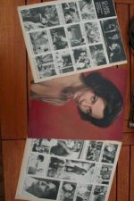 Vintage Clippings Claire Bloom Lot Of Pics !