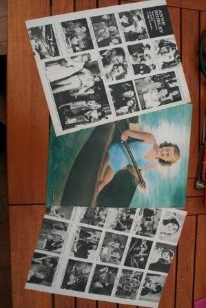 Vintage Clippings Anne Shirley Lot Of Pics !