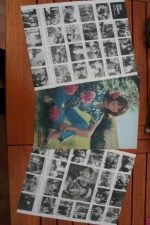 Vintage Clippings Sophie Desmarets Lot Of Pics !