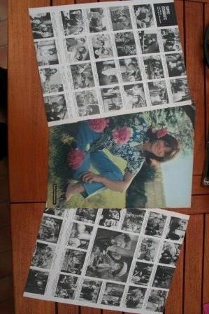 Vintage Clippings Sophie Desmarets Lot Of Pics !