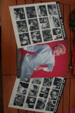 Vintage Clippings Greer Garson Lot Of Pics !