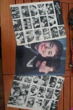 Vintage Clippings Ann Blyth Lot Of Pics !