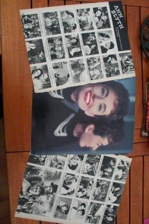 Vintage Clippings Ann Blyth Lot Of Pics !