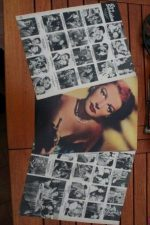 Vintage Clippings Ann Sheridan Lot Of Pics !