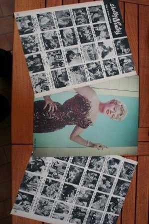 Vintage Clippings Shelley Winters Lot Of Pics !