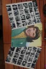 Vintage Clippings Ginette Leclerc Lot Of Pics !