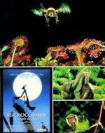 Microcosmos - Le Peuple De L'Ombre