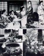 Saikaku Ichidai Onna