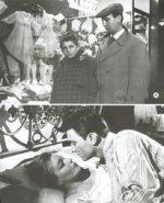 Festival De Cannes (1959)